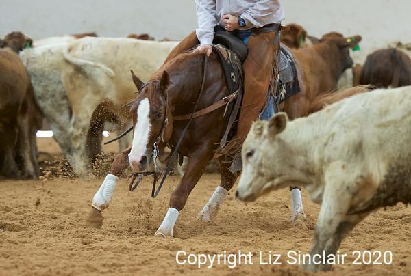 Cutting Horses 2 2020