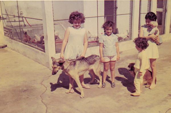filhas do Medina Clarisse, Debora', Iracema e Yolanda