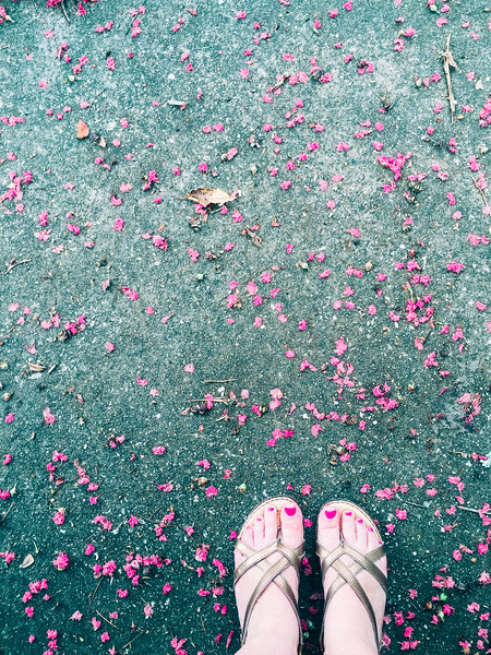 charleston feet.jpg