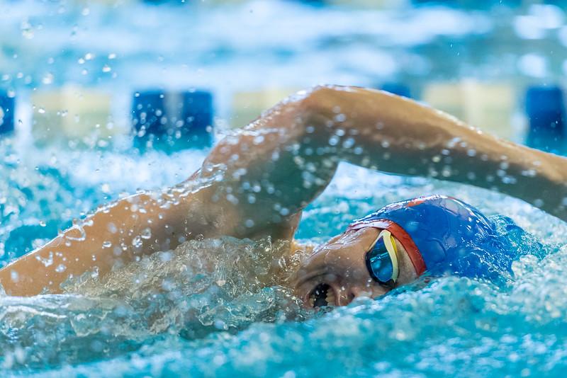 2018_KSMetz_Feb17_SHS Swimming_ State Finals_NIKON D5_5072.jpg