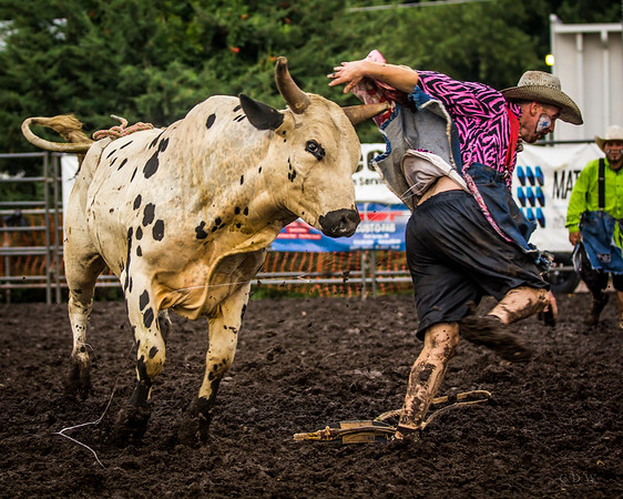 Bull Riding Frontier Western Celebration