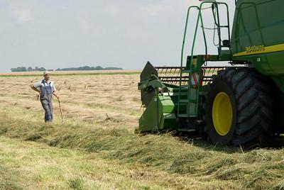 Combine van Kees & Lenus Hamster, Kees kijkt toe hoe de combine het rietzwenk oogst.