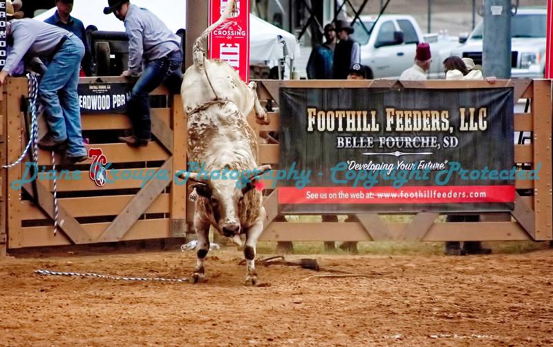 306 - Professional Bull Riders Rodeo - Deadwood, SD