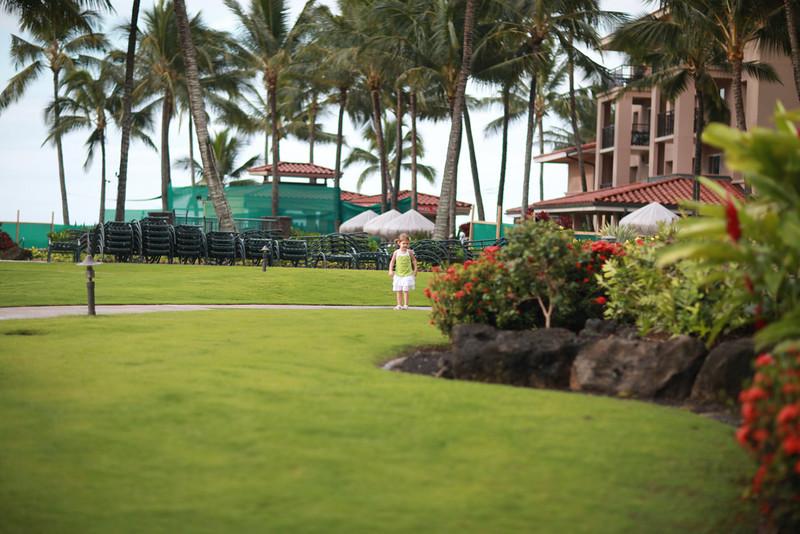 Kauai_D4_AM 016.jpg