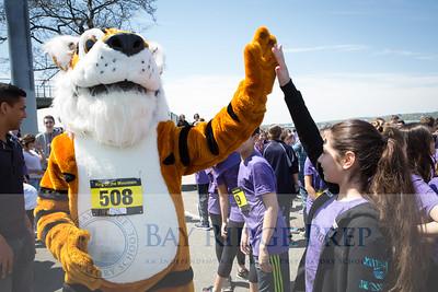 Tiger Trot 2016