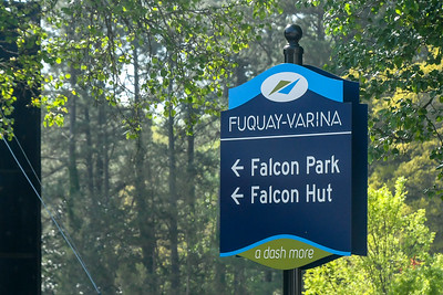 Teen Day at Falcon Park 4-14-18