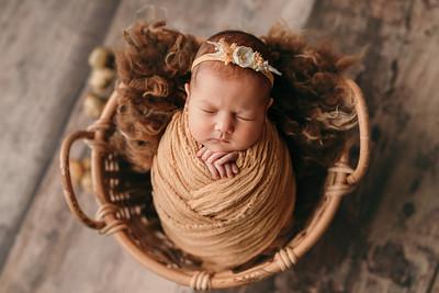 Daria • Newborn