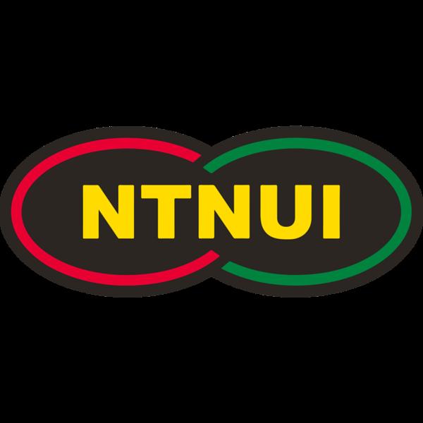 NTNUI Square transp PNG.png