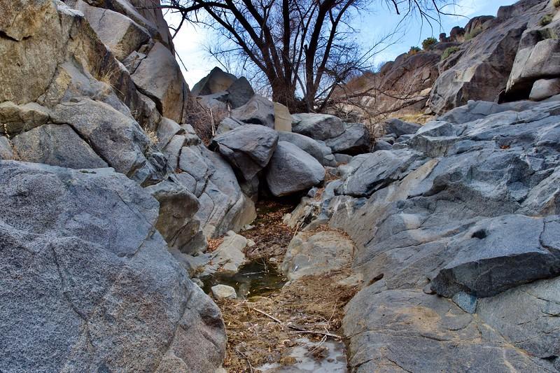 Water at Rock Spring