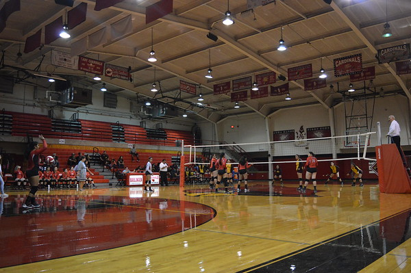 Cards vs Donna Volleyball