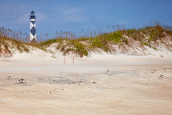 North Carolina - Coastal