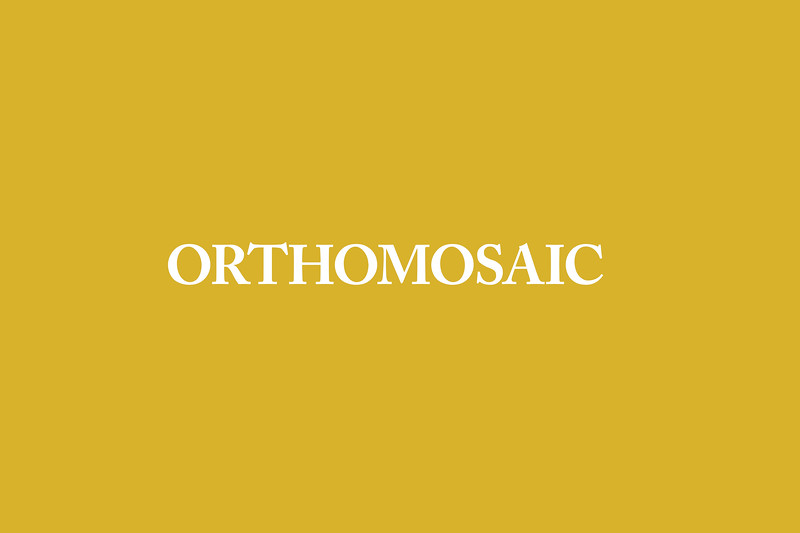 Orthomosaic.jpg
