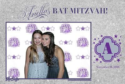 Ariella's Bat Mitzvah