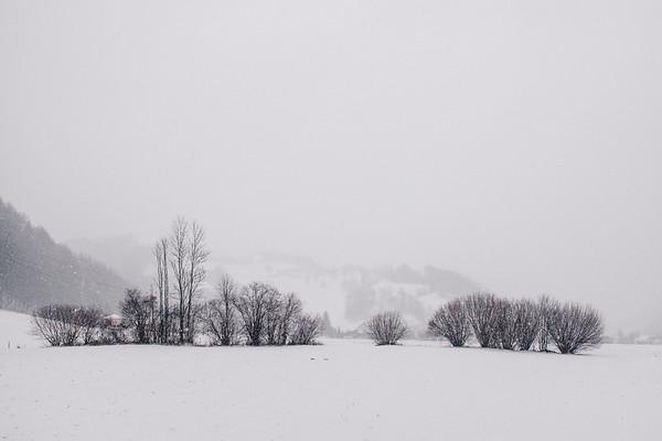 Dirnbergrunde im Schnee
