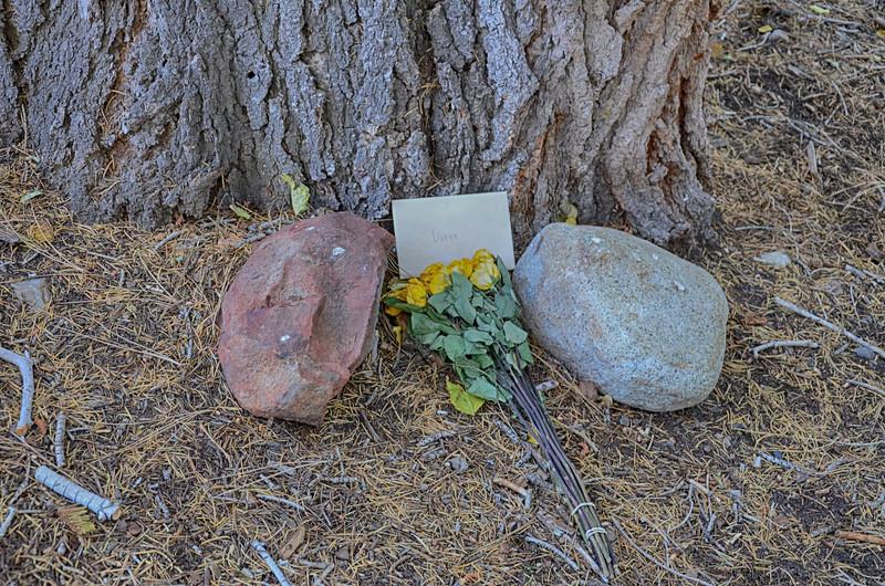 Memorial-Flowers.jpg