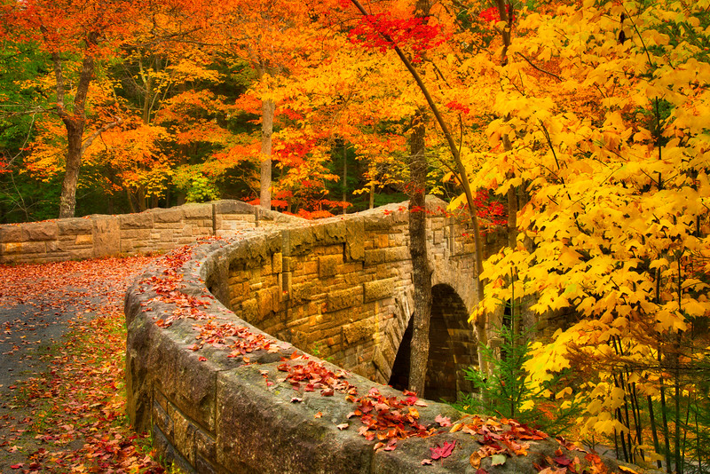 Autumn Brigde HiPass.jpg