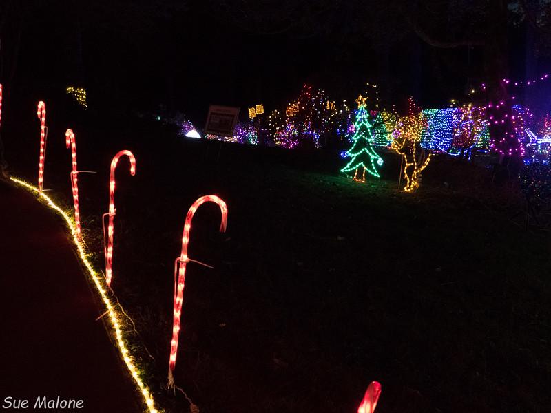Lights in Brookings-11.jpg