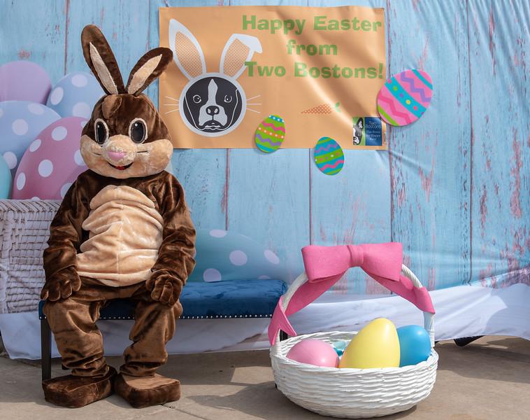 Easter2019TwoBostons-8216.jpg