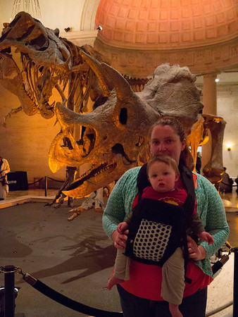 At the Natural History Museum
