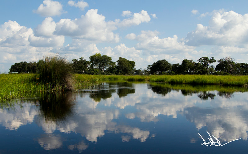 Botswana LandscapeS-2.jpg