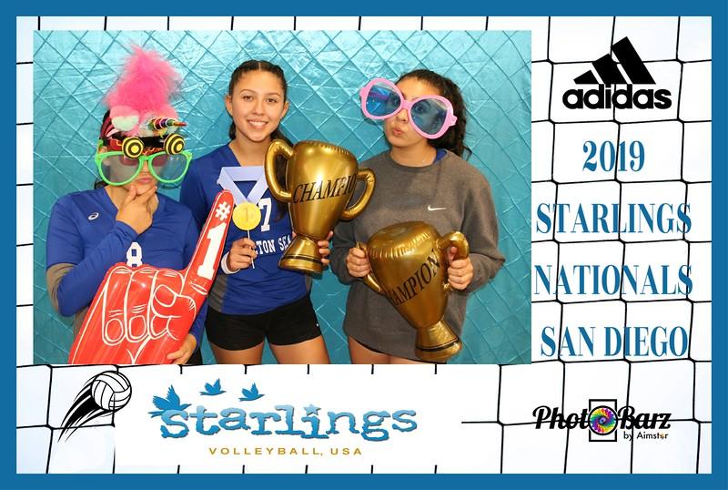 Starlings Volleyball (42).jpg
