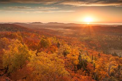 Minnesota North Woods