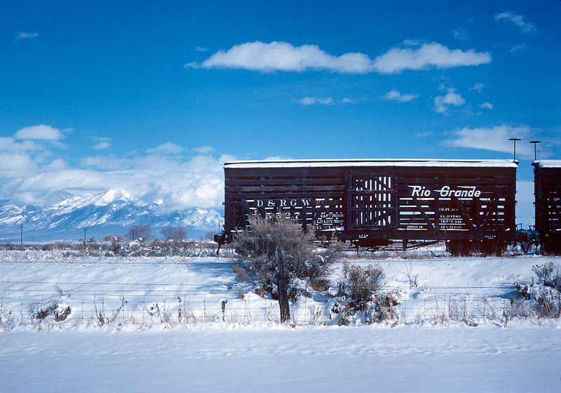 December 1961.  A stored stock on the remnants of the Valley Line to Salida just north of Alamosa.