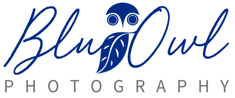 Blu Owl Photography-Blue.png