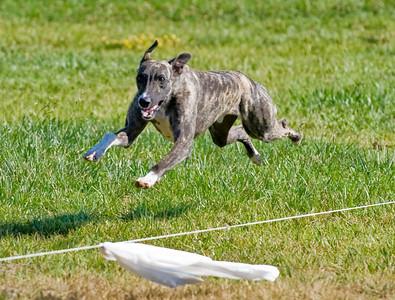 MBCA Hollister 7-22-2012