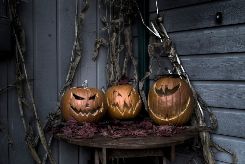 Three carved pumpkins