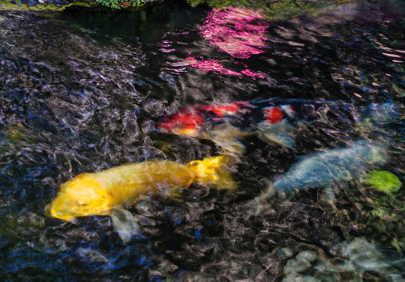pond selfrealisation temple Enc.jpg