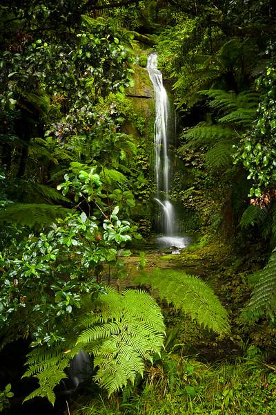 Forgotten Waterfall
