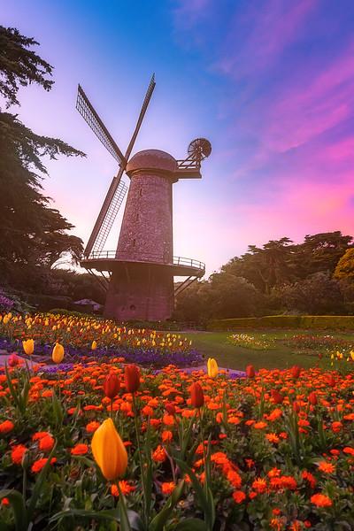 windmill copy.jpg