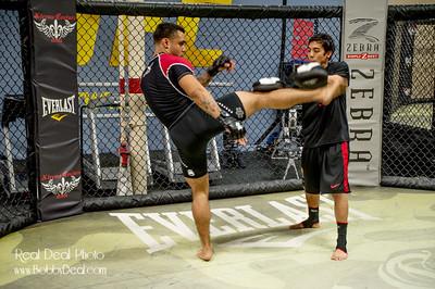 Combat Sports - MMA