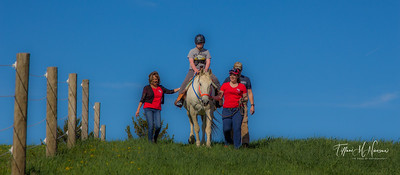 Horseback Riding and Equine Events