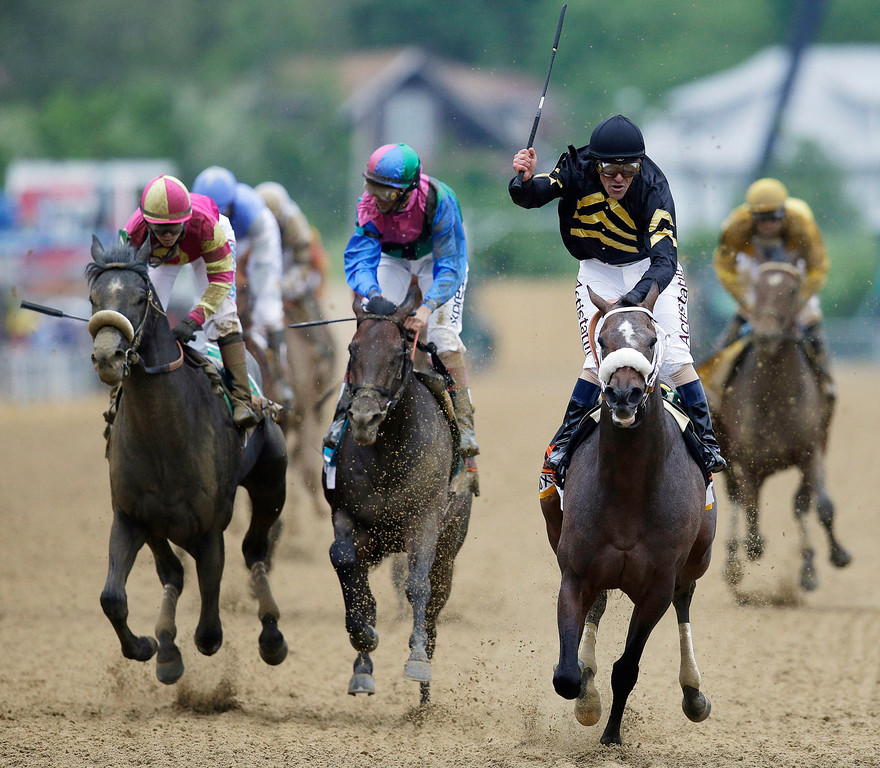 . Jockey Gary Stevens celebrates aboard Oxbow after winning the 138th Preakness Stakes horse race at Pimlico Race Course, Saturday, May 18, 2013, in Baltimore. Itsmyluckyday, second from left, ridden by John Velazquez, finished second; and Mylute, left, ridden by Rosie Napravnik finished third. (AP Photo/Patrick Semansky)