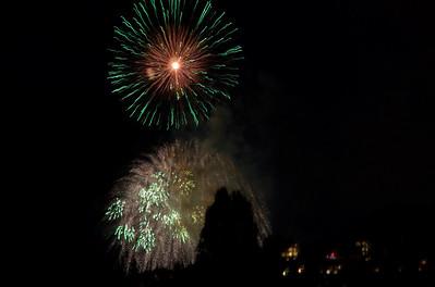 Michelle's Fine Art Fireworks