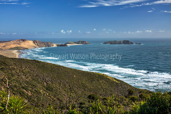 Northland (Cape Reinga to Auckland)