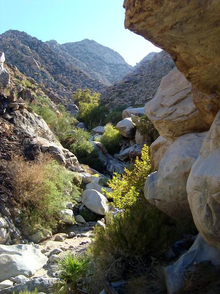 05 Cougar Canyon (28).JPG
