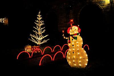 2010 Christmas Scenes