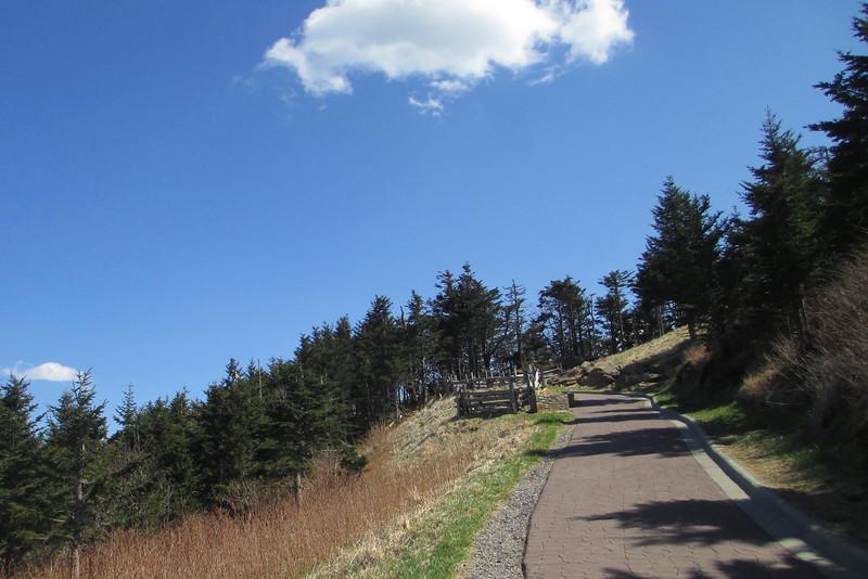 Summit Trail - 6,650'