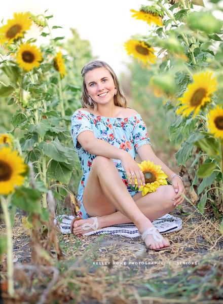 Sunflower 0937.jpg