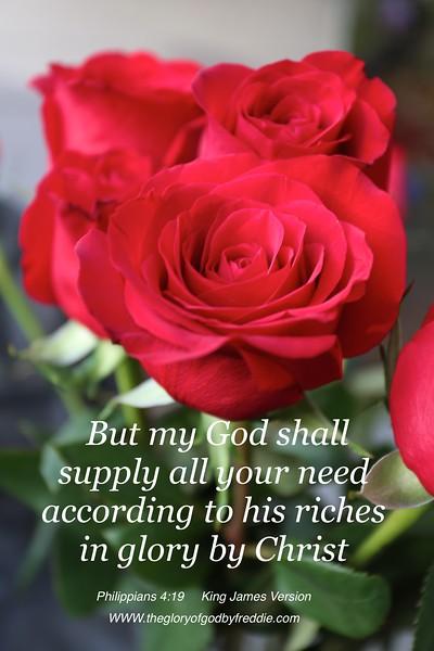 Philippians 4;19 .jpg