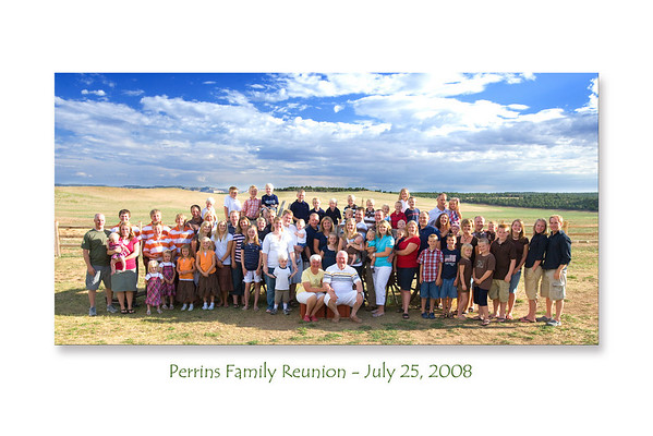 Perrins Family Reunion -- July 25, 2008