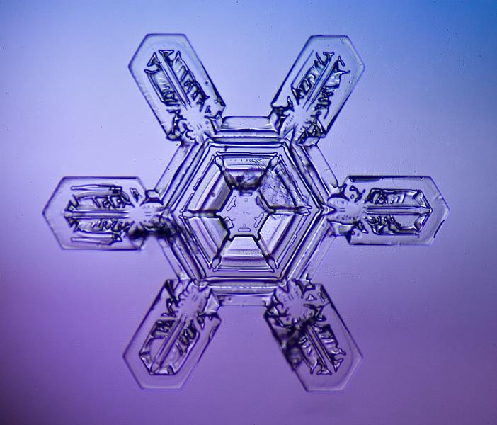 snowflake-5585-Edit.jpg