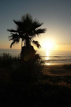 5/7/2008 - La Jolla Beach during Polo Game