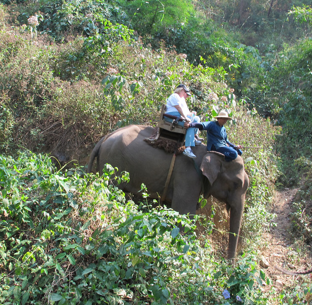 Gretchen Lengyel and George Denham  Look at that angle!  Even the mahout is holding on.
