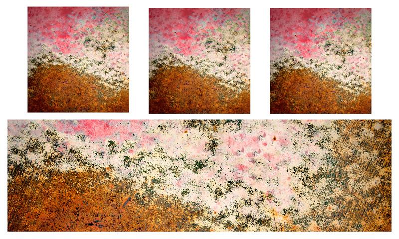 6141 tryptic  3-1 .jpg