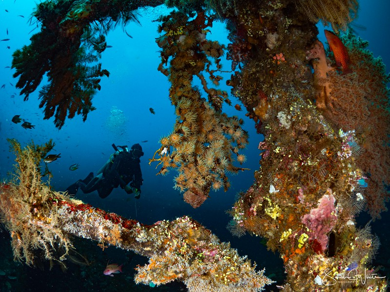 Bali-16012020-1540.jpg