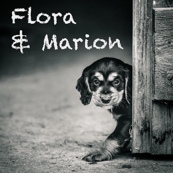 Flora-Gallery-Icons.jpg